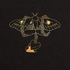 David Gray - Gold In A Brass Age (CD, LP)